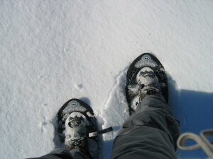 snow_shoes.jpg